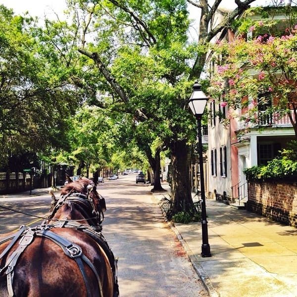 Historic Charleston Carriage Ride 2