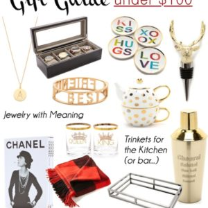 Holiday Gift Guide Under $100 2014