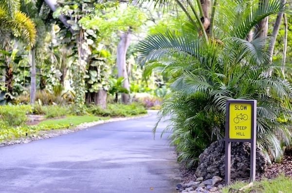 Rockefeller Trail at Dorado Beach Ritz-Carlton
