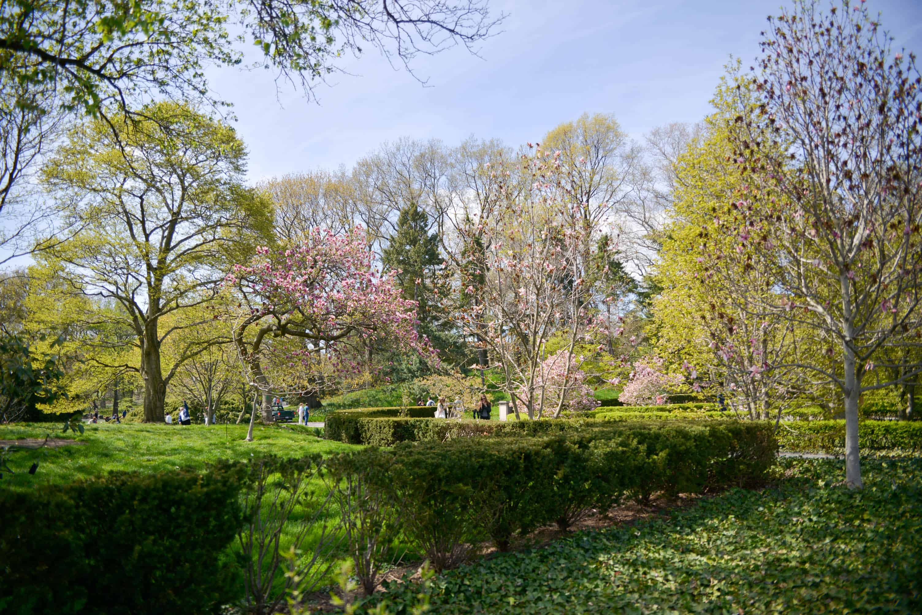 My Visit To The Brooklyn Botanic Garden With Rituals Katie 39 S Bliss