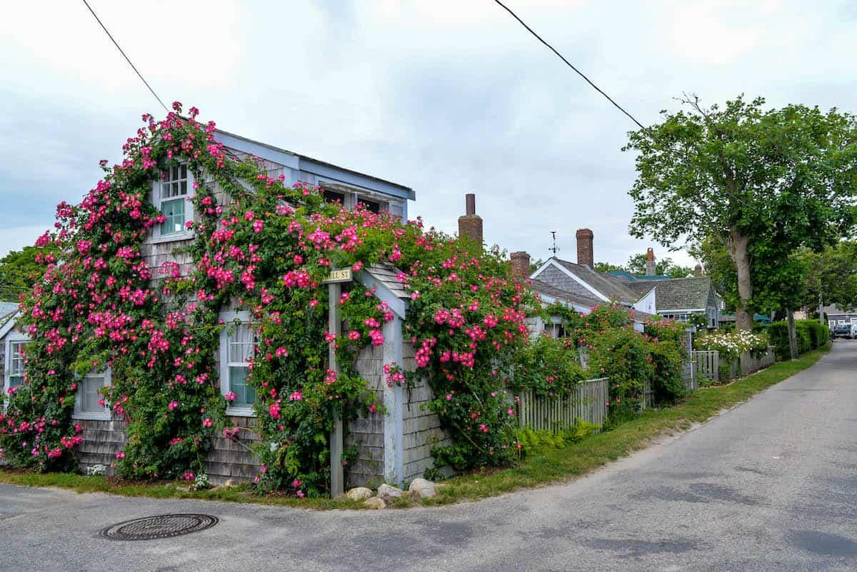 Sconset Nantucket Cottage