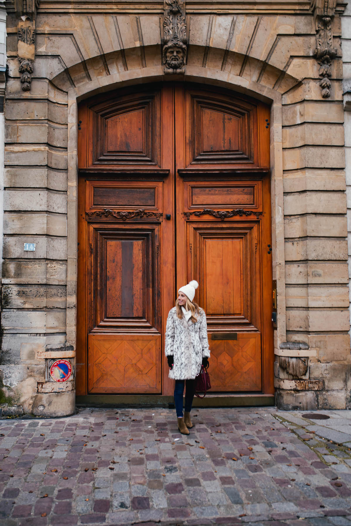 Beautiful Wooden Paris Door