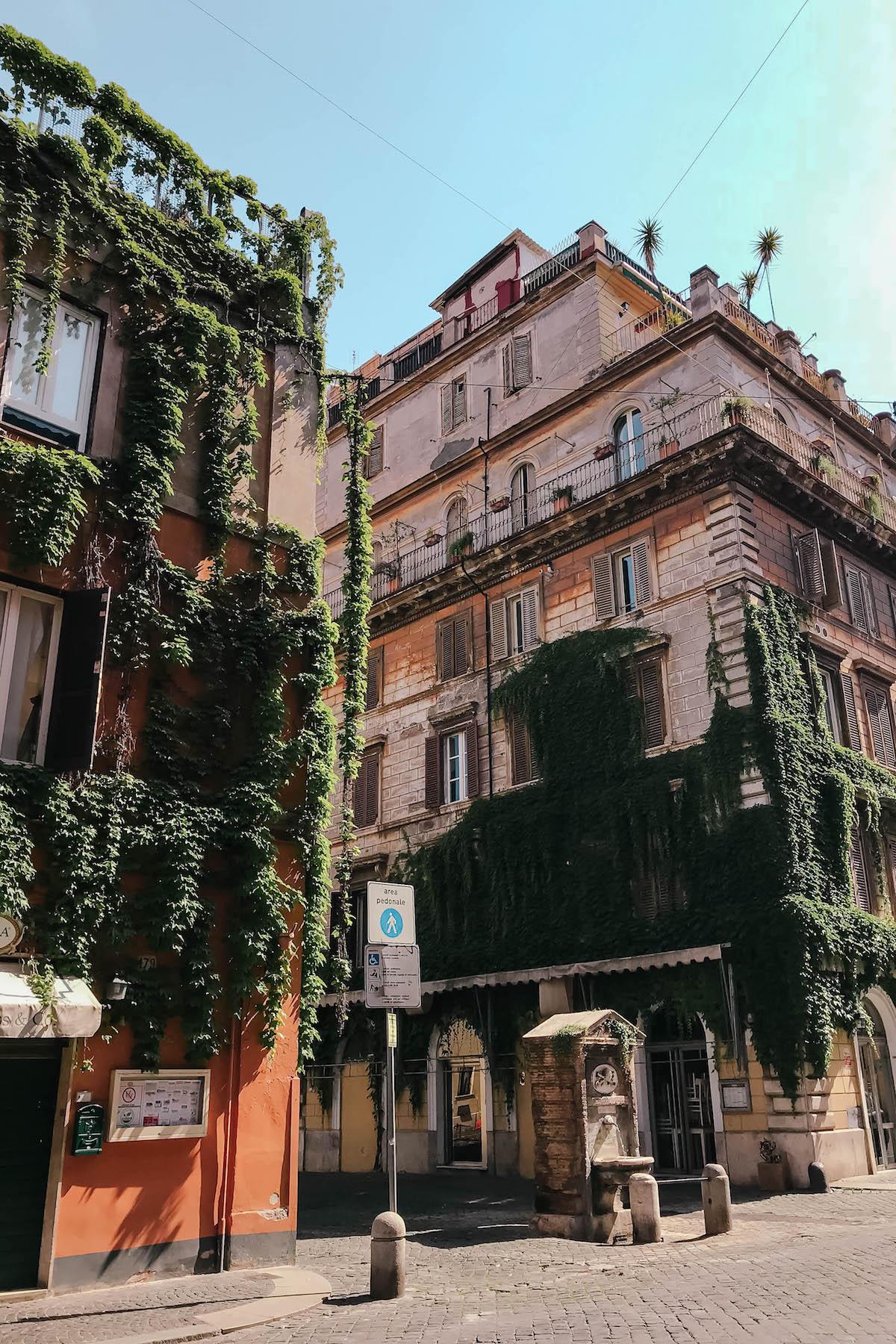 Hedera Gelato Rome
