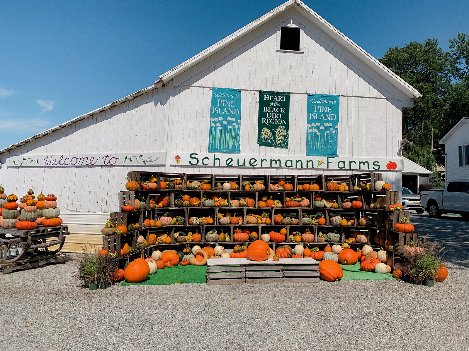 Scheuermann Farms New York