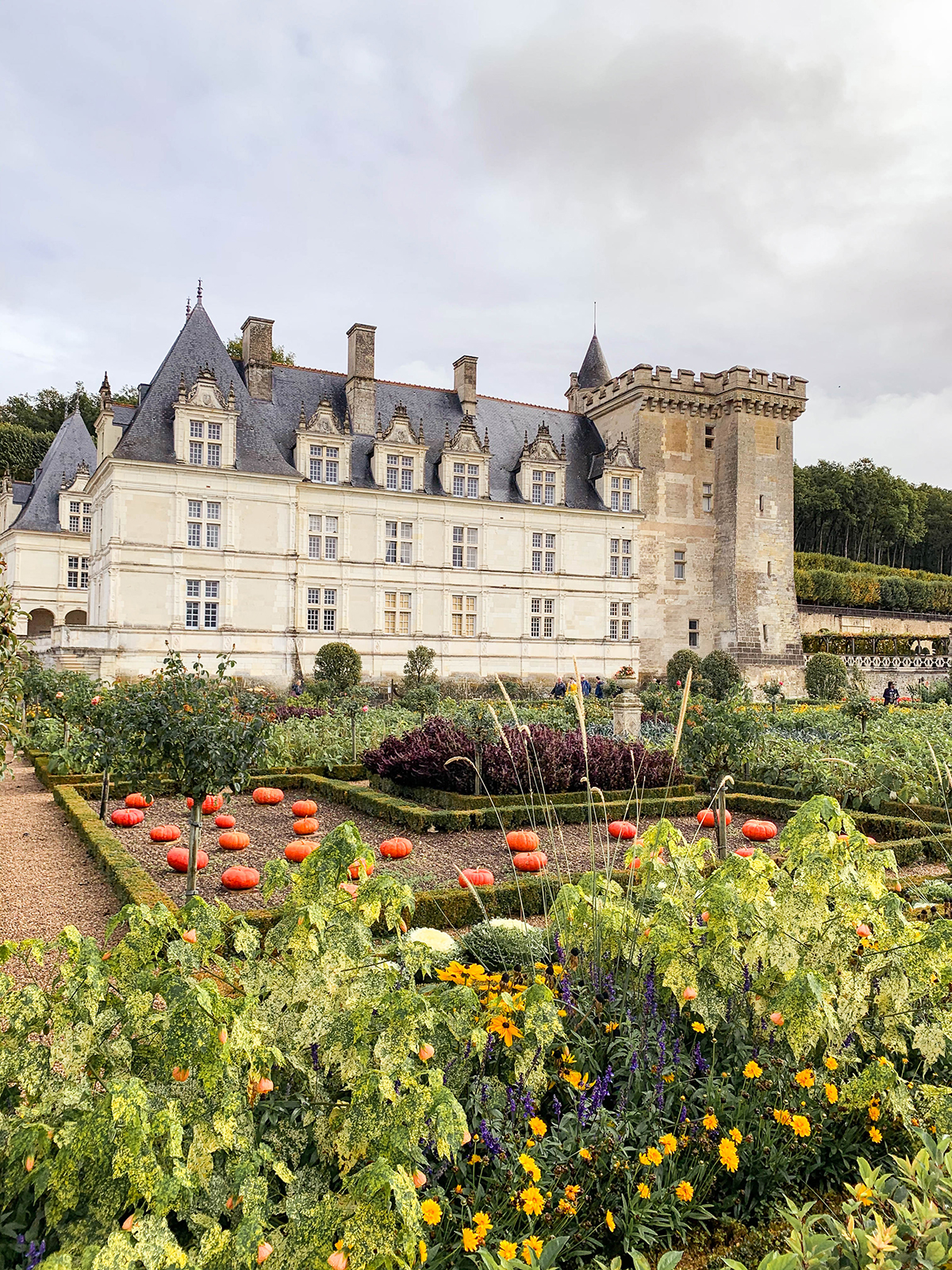 Loire Valley Travel Guide