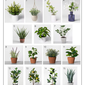 Katies Bliss Affordable Faux Plants