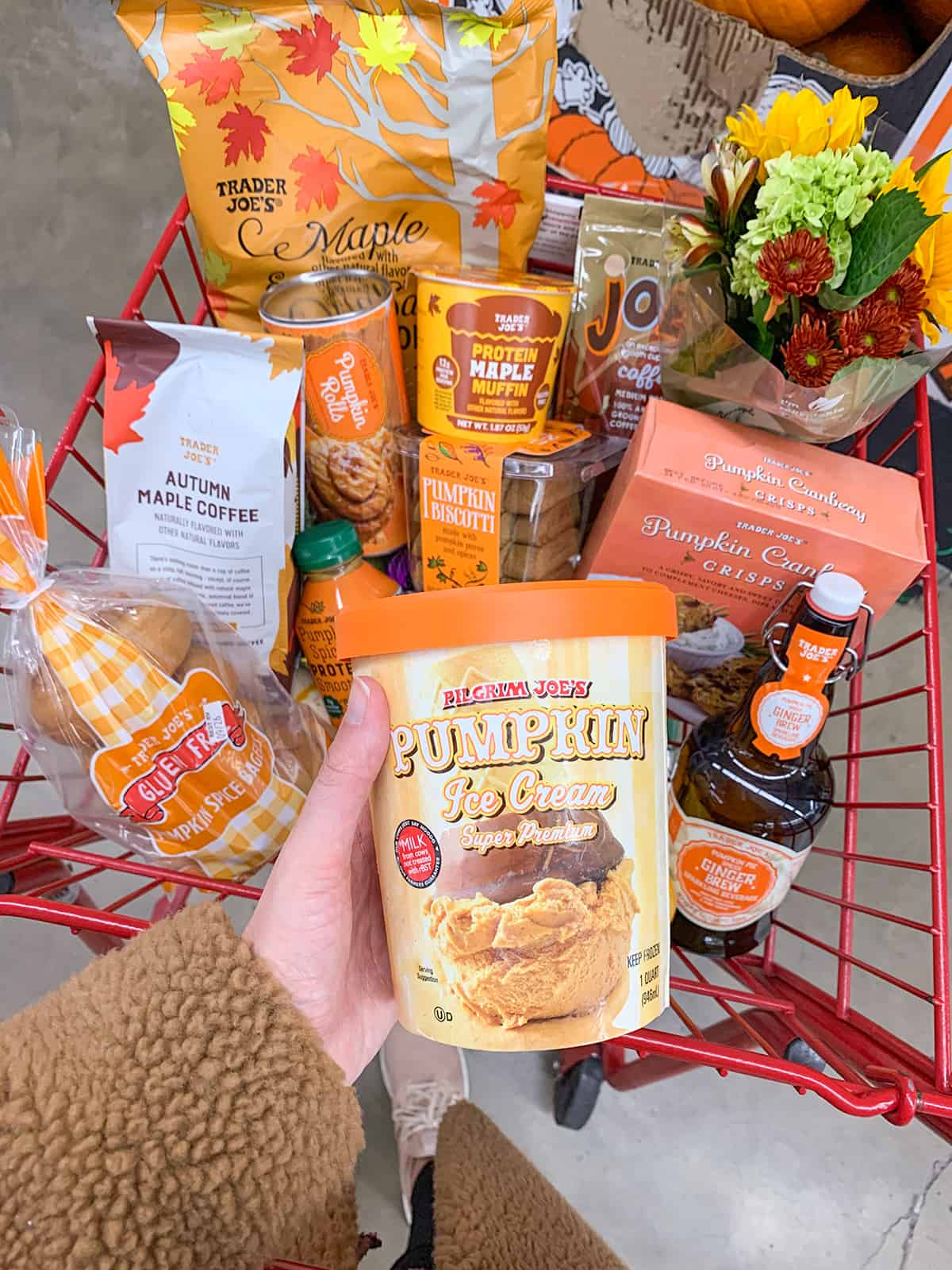 Katies Bliss Fall Trader Joes Haul